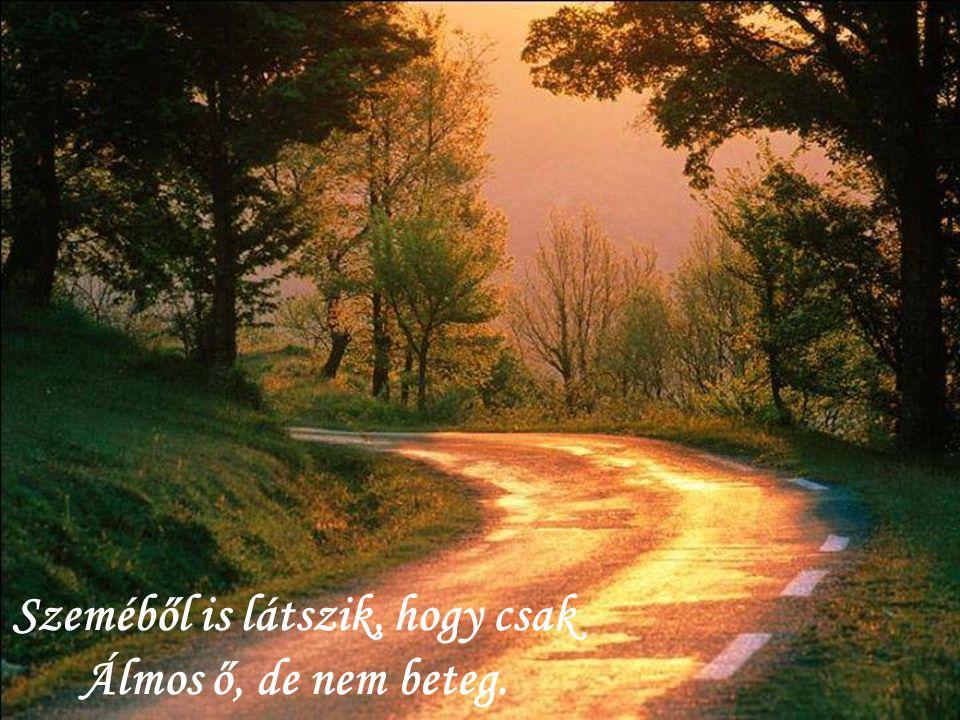 És valóban ősszel a föld Csak elalszik, nem hal meg;