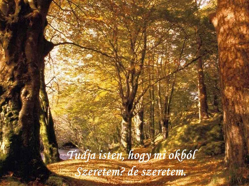 Itt van az ősz, itt van újra, S szép, mint mindig, énnekem.