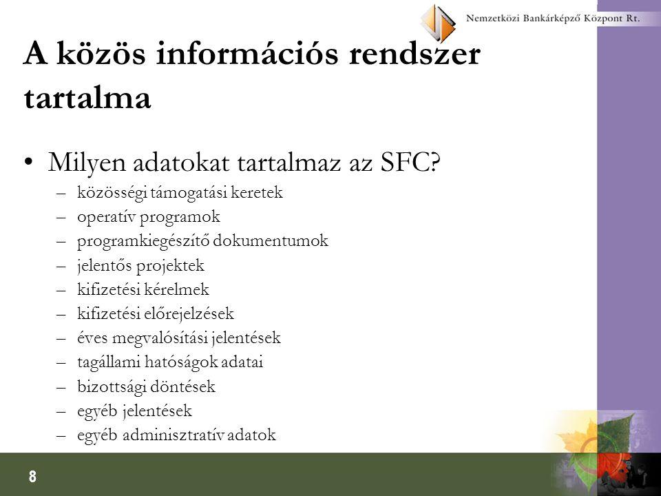 9 Hozzáférés a közös információs rendszerhez A Bizottság két módot javasolt a közös rendszer adattábláihoz való hozzáférésre 1.
