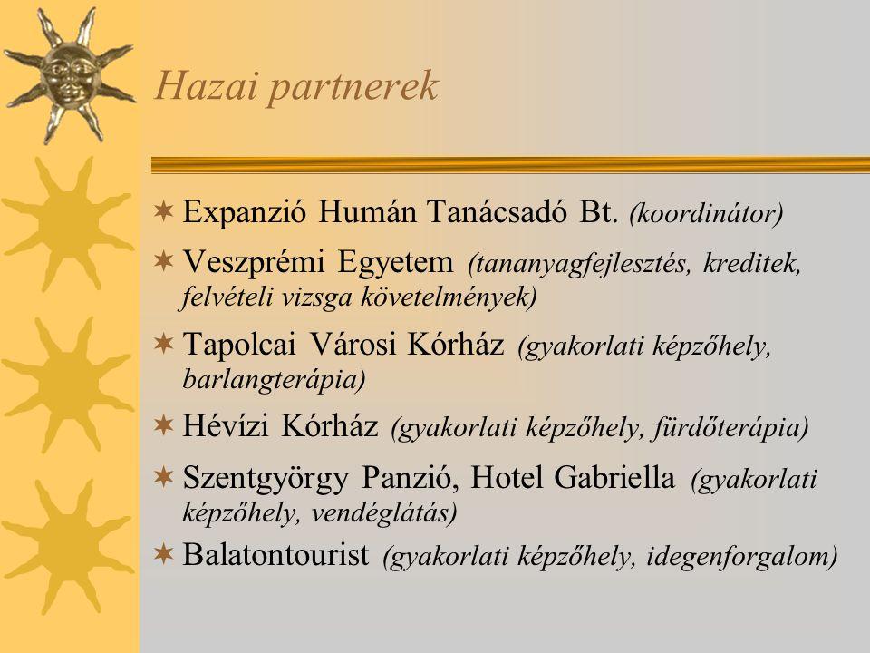 Hazai partnerek  Expanzió Humán Tanácsadó Bt. (koordinátor)  Veszprémi Egyetem (tananyagfejlesztés, kreditek, felvételi vizsga követelmények)  Tapo