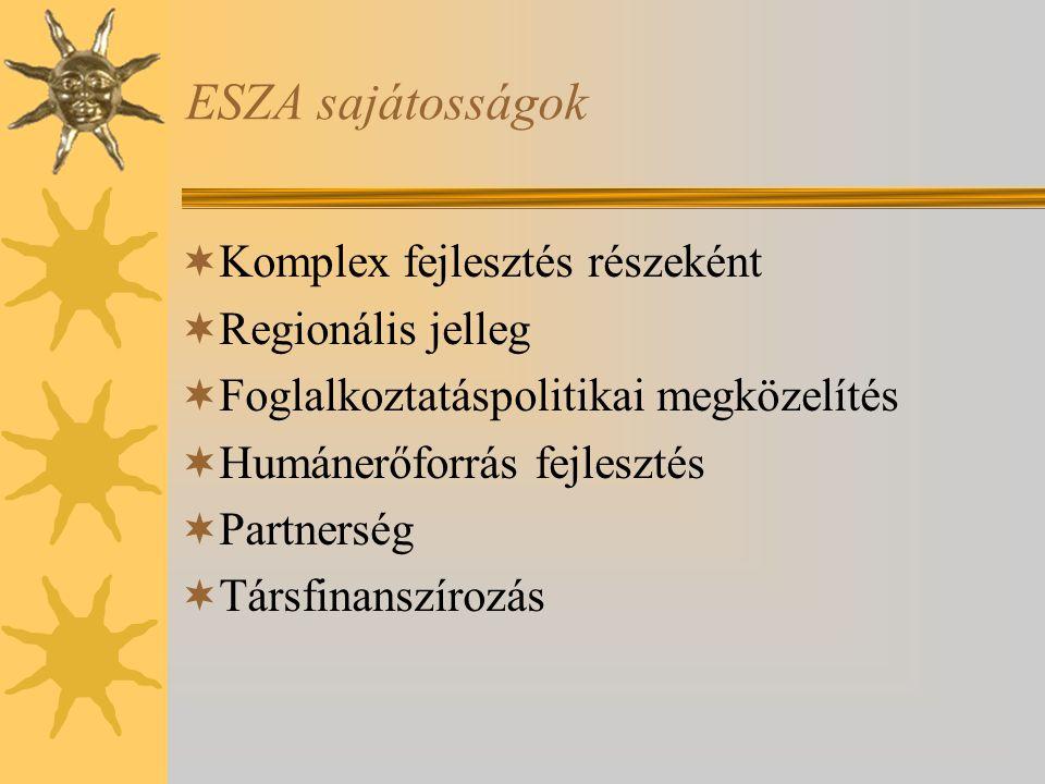 ESZA sajátosságok  Komplex fejlesztés részeként  Regionális jelleg  Foglalkoztatáspolitikai megközelítés  Humánerőforrás fejlesztés  Partnerség  Társfinanszírozás