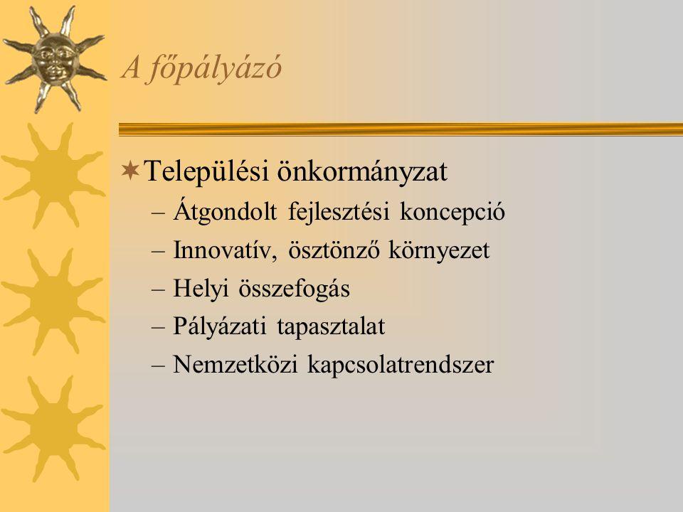 A főpályázó  Települési önkormányzat –Átgondolt fejlesztési koncepció –Innovatív, ösztönző környezet –Helyi összefogás –Pályázati tapasztalat –Nemzetközi kapcsolatrendszer