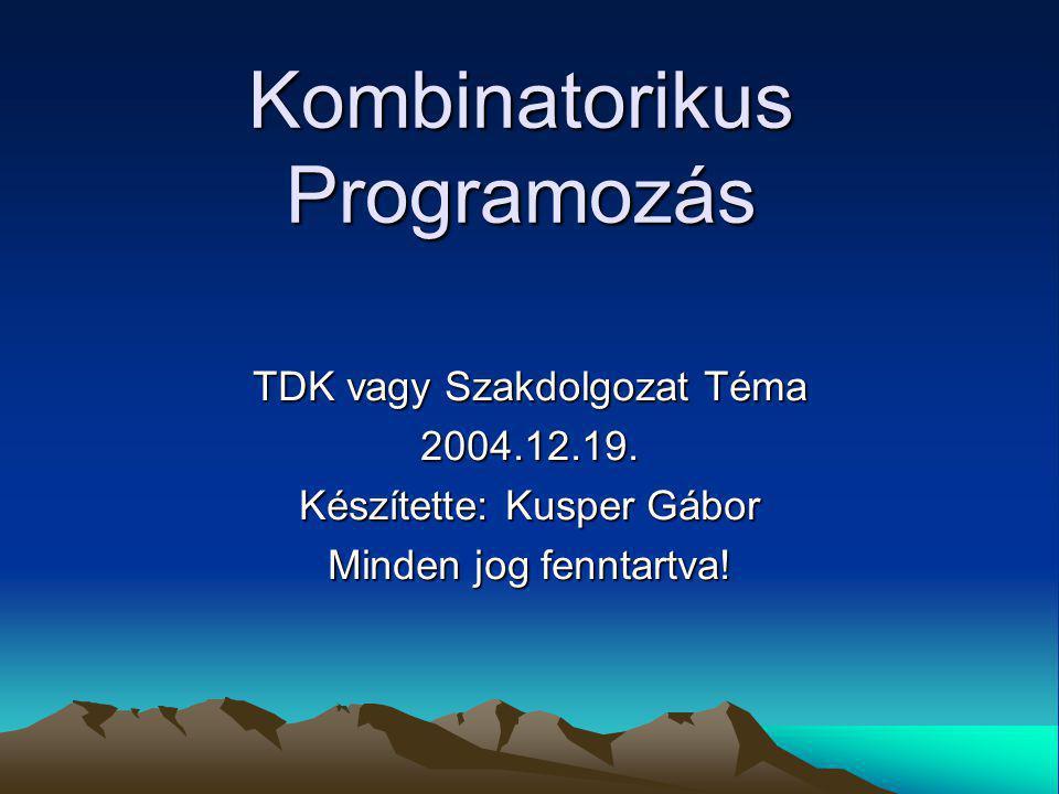 Kombinatorikus Programozás TDK vagy Szakdolgozat Téma 2004.12.19.