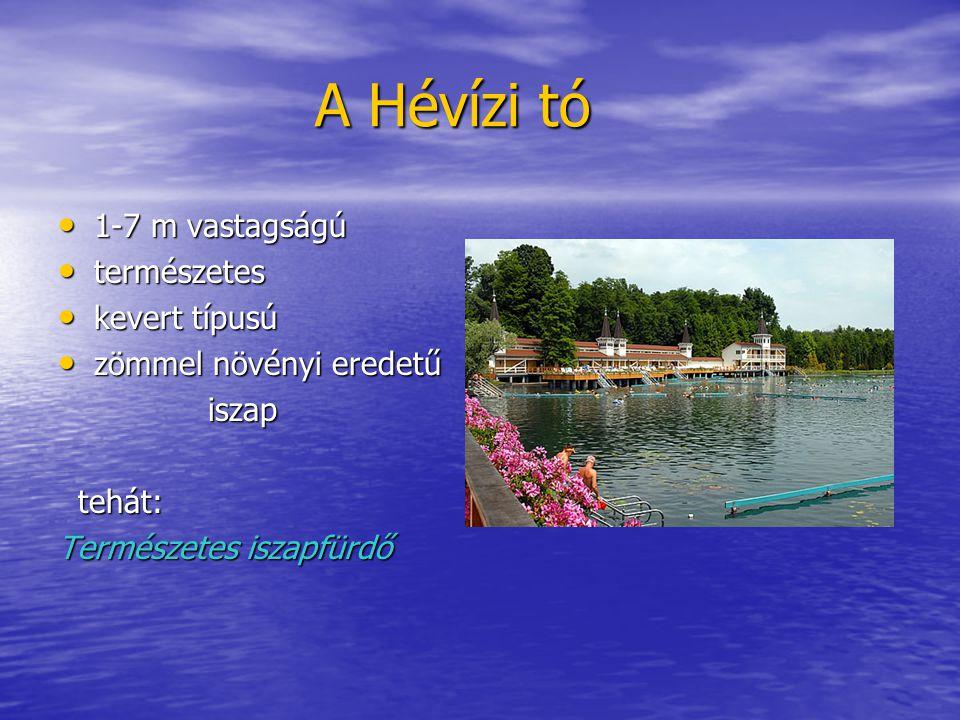 A Hévízi tó A Hévízi tó 1-7 m vastagságú 1-7 m vastagságú természetes természetes kevert típusú kevert típusú zömmel növényi eredetű zömmel növényi er