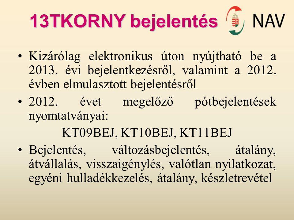 Kizárólag elektronikus úton nyújtható be a 2013. évi bejelentkezésről, valamint a 2012. évben elmulasztott bejelentésről 2012. évet megelőző pótbejele
