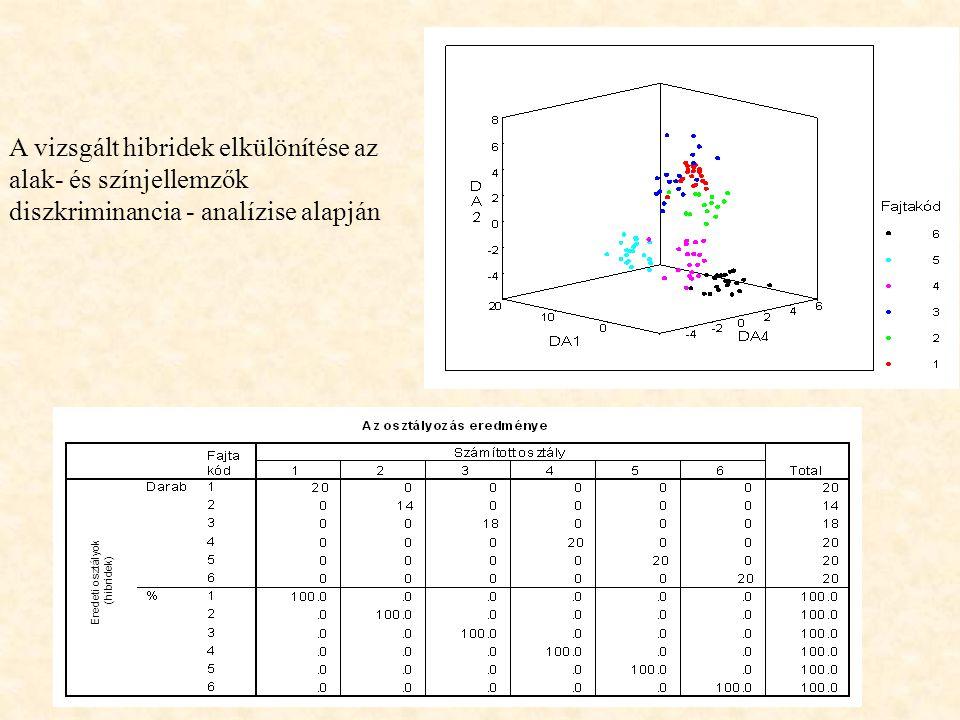 A vizsgált hibridek elkülönítése az alak- és színjellemzők diszkriminancia - analízise alapján Eredeti osztályok (hibridek)