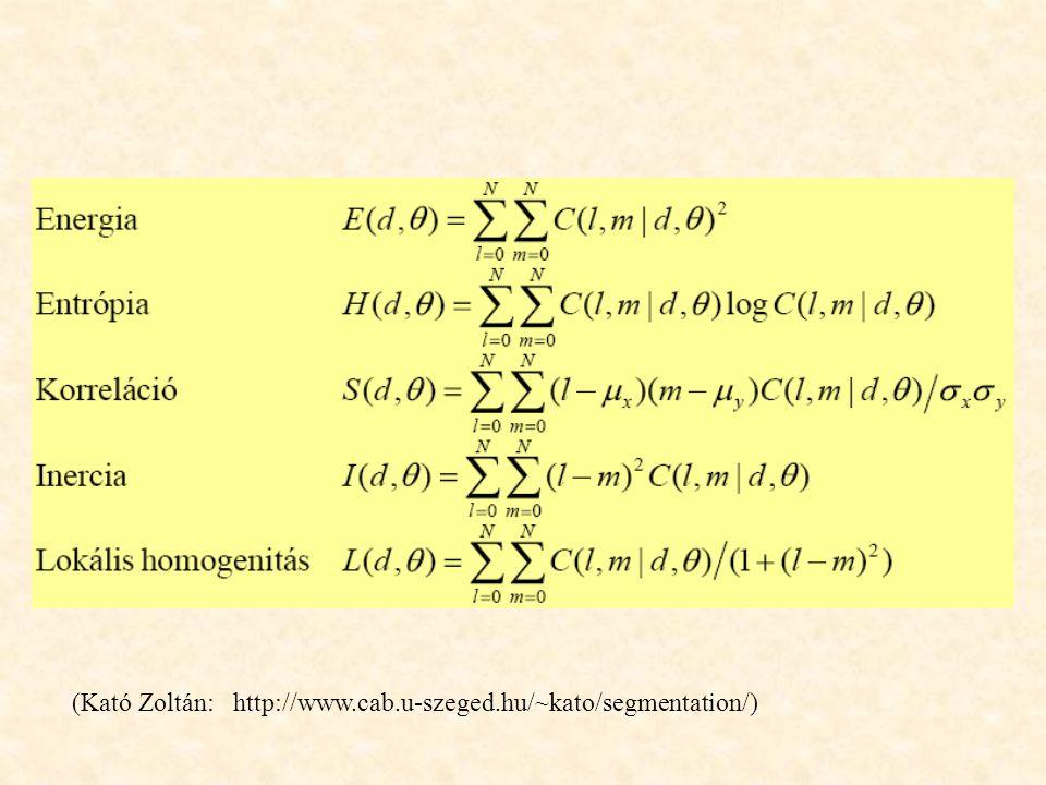 (Kató Zoltán: http://www.cab.u-szeged.hu/~kato/segmentation/)