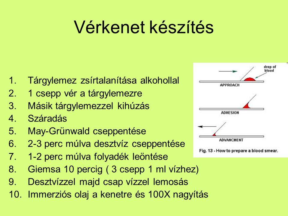 Összetevők -Plazma 55% 91% víz 7% plazmafehérjék (albumin, globulin, fibrinogén) 2% tápanyagok (aminosavak, cukor, lipidek) hormonok (EPO, insulin) elektrolitok -Sejtes elemek 45% Buffy coat FVS (7-9 ezer/ μl) thrombocita (2-300 ezer/ μl) VVT (500 ezer/ μl)