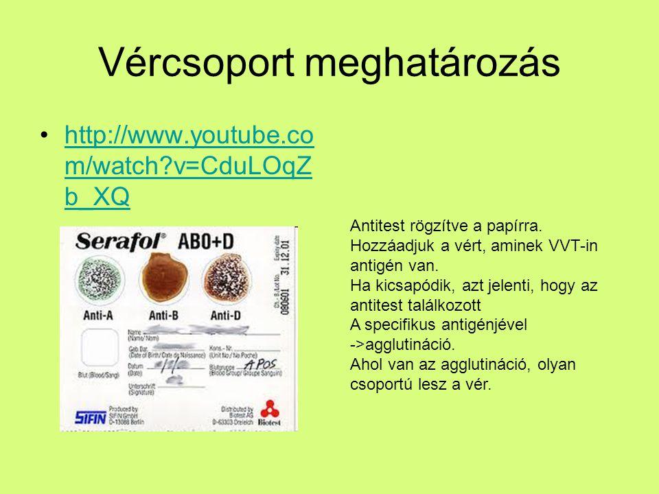 Vércsoport meghatározás http://www.youtube.co m/watch?v=CduLOqZ b_XQhttp://www.youtube.co m/watch?v=CduLOqZ b_XQ Antitest rögzítve a papírra. Hozzáadj