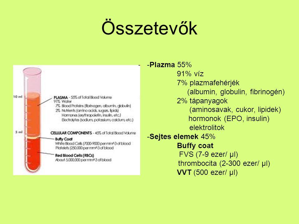 Összetevők: Plazma (55%): 91% víz fehérjék: albumin, antitestek, alvadási faktorok, lipoproteinek… glükóz, fehérjék, aminosavak (sejttáplálék) ásványi ionok (Na +, K +, Cl 2+, HCO 3 ) hormonok széndioxid, urea, tejsav (a.cs.