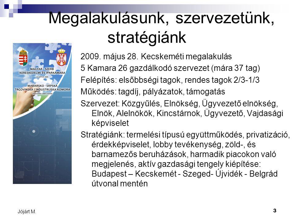 3 Jójárt M. Megalakulásunk, szervezetünk, stratégiánk 2009.