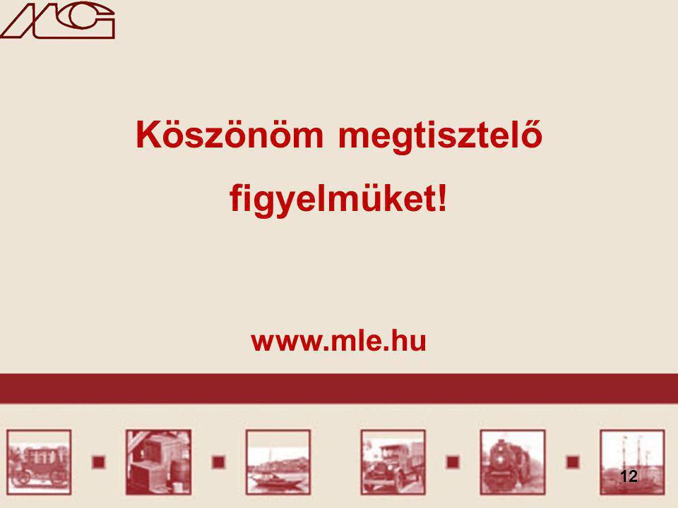 12 Köszönöm megtisztelő figyelmüket! www.mle.hu