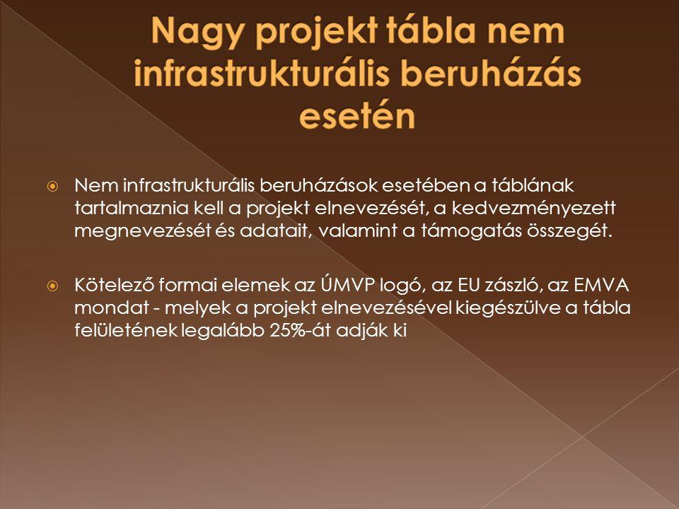  Nem infrastrukturális beruházások esetében a táblának tartalmaznia kell a projekt elnevezését, a kedvezményezett megnevezését és adatait, valamint a támogatás összegét.