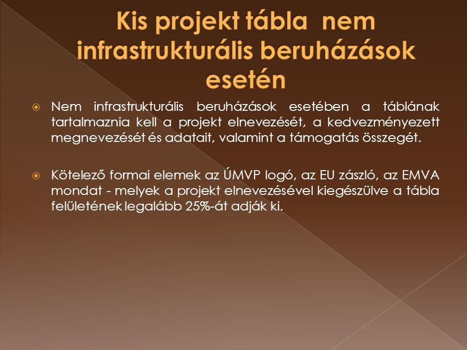  Nem infrastrukturális beruházások esetében a táblának tartalmaznia kell a projekt elnevezését, a kedvezményezett megnevezését és adatait, valamint a