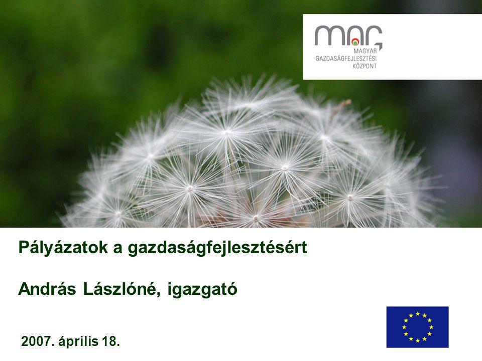 Pályázatok a gazdaságfejlesztésért 2007. április 18. András Lászlóné, igazgató