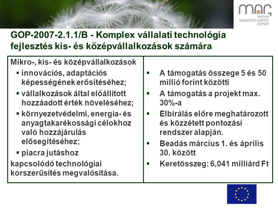 GOP-2007-2.1.1/B - Komplex vállalati technológia fejlesztés kis- és középvállalkozások számára Mikro-, kis- és középvállalkozások  innovációs, adaptációs képességének erősítéséhez;  vállalkozások által előállított hozzáadott érték növeléséhez;  környezetvédelmi, energia- és anyagtakarékossági célokhoz való hozzájárulás elősegítéséhez;  piacra jutáshoz kapcsolódó technológiai korszerűsítés megvalósítása.