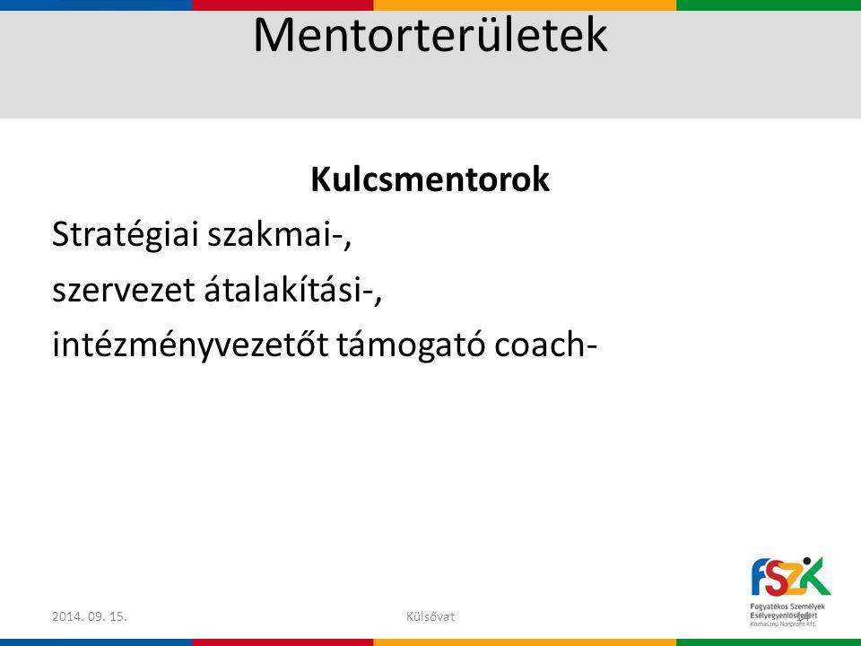 Mentorterületek Kulcsmentorok Stratégiai szakmai-, szervezet átalakítási-, intézményvezetőt támogató coach- 2014. 09. 15.Külsővat14