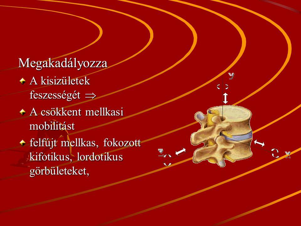 I. Mozgásszervi előnyök Megakadályozza: A belégző és segéd légző izmok zsugorodását. A kedvezőtlen hossz- tenzió kialakulását. A vállak megemelt, előr