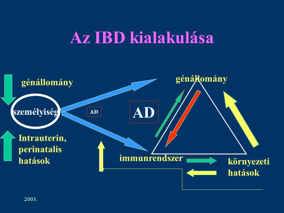 2003. Az IBD kialakulása génállomány immunrendszer környezeti hatások személyiség génállomány Intrauterin, perinatalis hatások AD