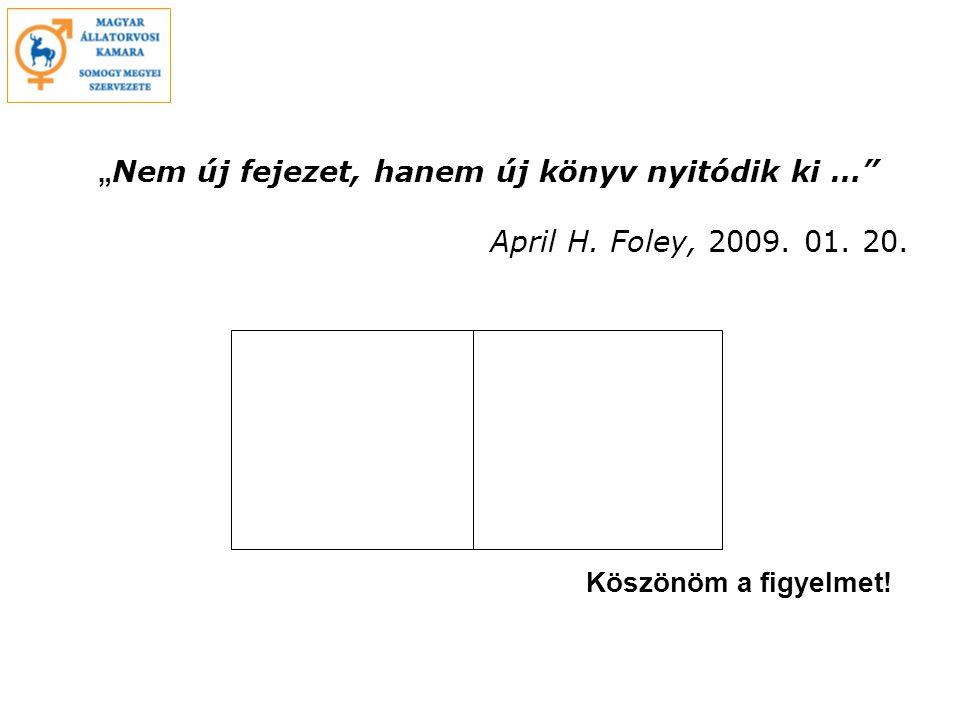 """"""" Nem új fejezet, hanem új könyv nyitódik ki … April H. Foley, 2009. 01. 20. Köszönöm a figyelmet!"""