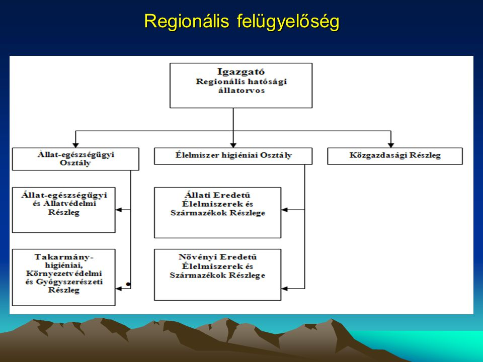 Regionális felügyelőség