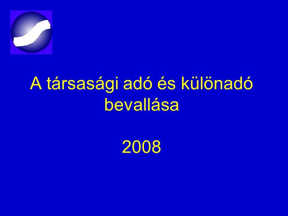 A társasági adó és különadó bevallása 2008