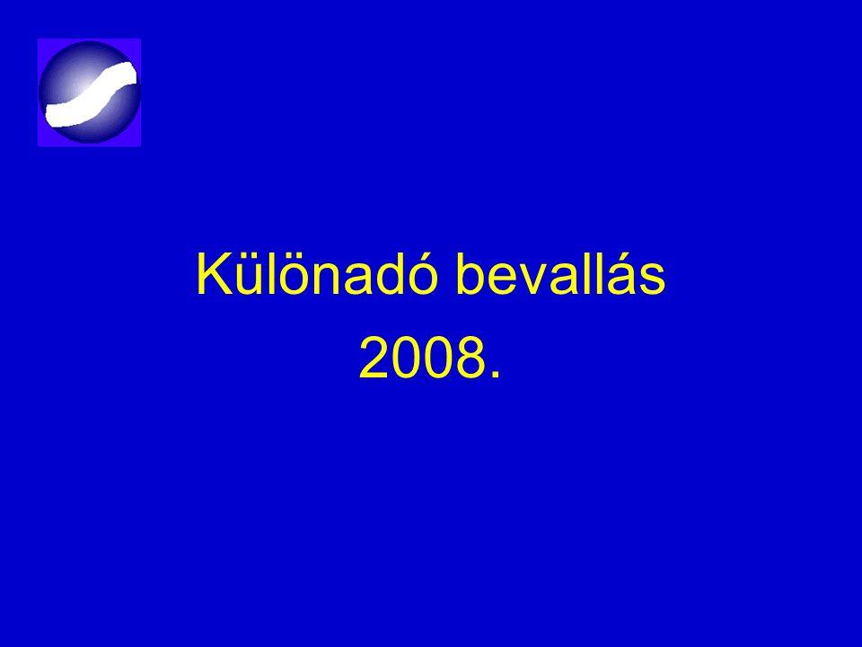 Különadó bevallás 2008.