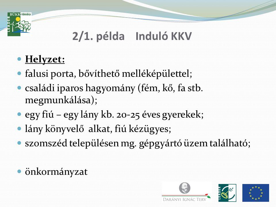 2/1. példa Induló KKV Helyzet: falusi porta, bővíthető melléképülettel; családi iparos hagyomány (fém, kő, fa stb. megmunkálása); egy fiú – egy lány k