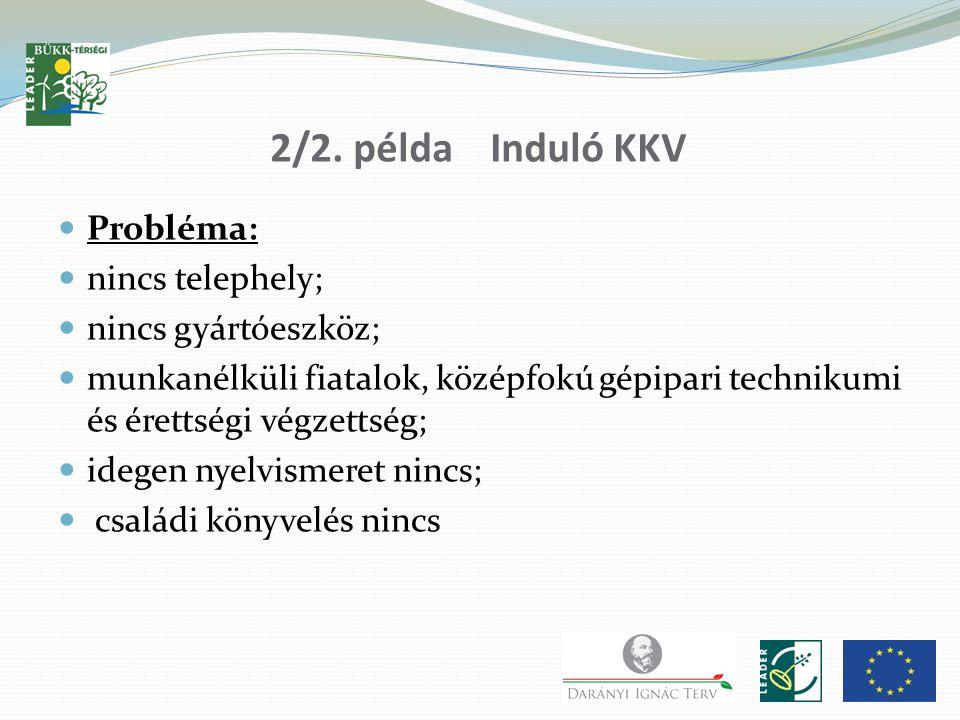 2/2. példa Induló KKV Probléma: nincs telephely; nincs gyártóeszköz; munkanélküli fiatalok, középfokú gépipari technikumi és érettségi végzettség; ide