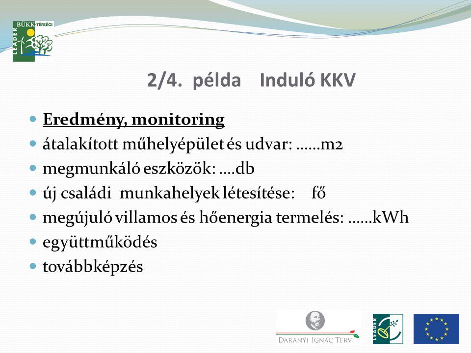 2/4. példa Induló KKV Eredmény, monitoring átalakított műhelyépület és udvar: ……m2 megmunkáló eszközök: ….db új családi munkahelyek létesítése: fő meg