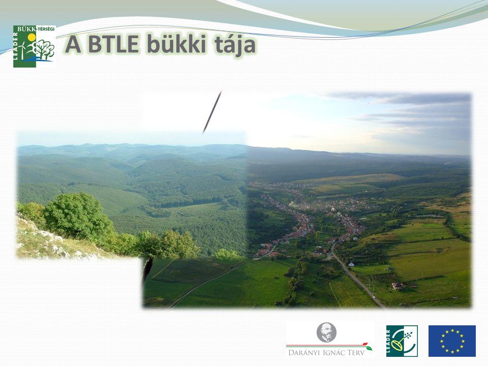 Török Zoltán előadása Borsod-Abaúj-Zemplén Megyei Önkormányzat Terület-és Vidékfejlesztési osztályvezető Megyei tervezési folyamata 2014 - 2020 Ágazati Operatív Programok (OP) forrásai: .
