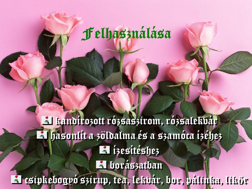 Felhasználása kandírozott rózsaszirom, rózsalekvár hasonlít a zöldalma és a szamóca ízéhez ízesítéshez borászatban csipkebogyó szirup, tea, lekvár, bo