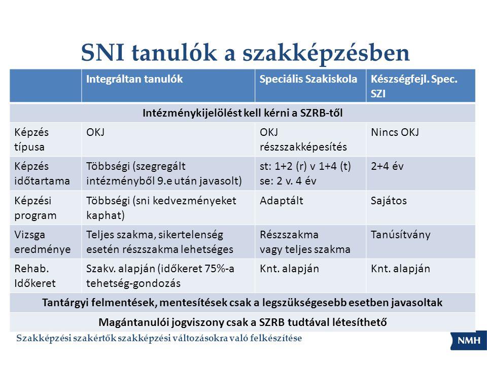 Sajátos nevelési igényű tanulók vizsgája 20/2012.(VIII.