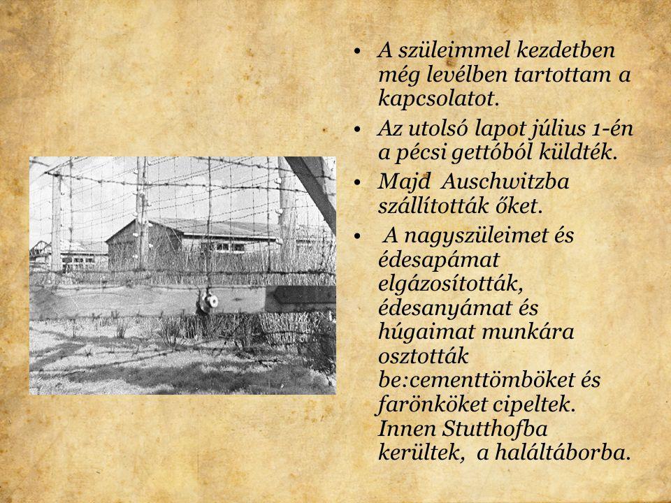 A budapesti gettóba kerültem. Borzalmas állapotok voltak. Január 18-án a gettó felszabadult és én haza indultam Bonyhádra.