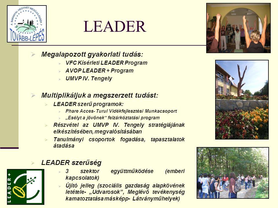 LEADER  Megalapozott gyakorlati tudás:  VFC Kísérleti LEADER Program  AVOP LEADER + Program  UMVP IV.