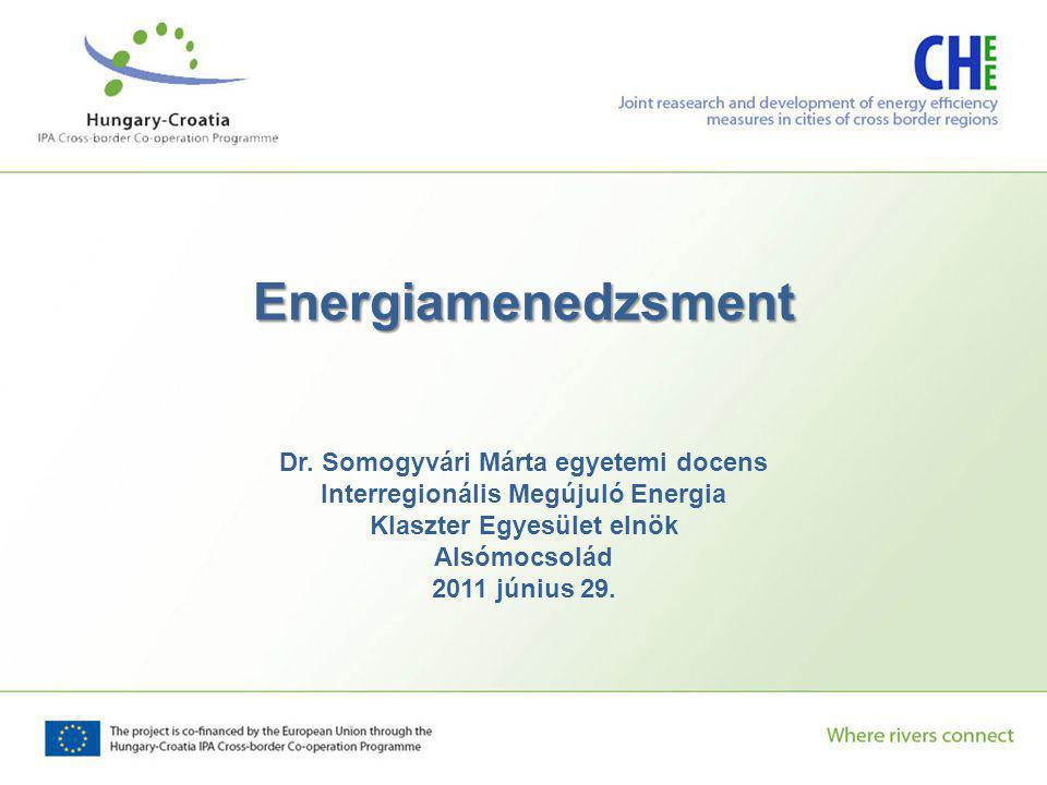 Energiamenedzsment Dr. Somogyvári Márta egyetemi docens Interregionális Megújuló Energia Klaszter Egyesület elnök Alsómocsolád 2011 június 29.