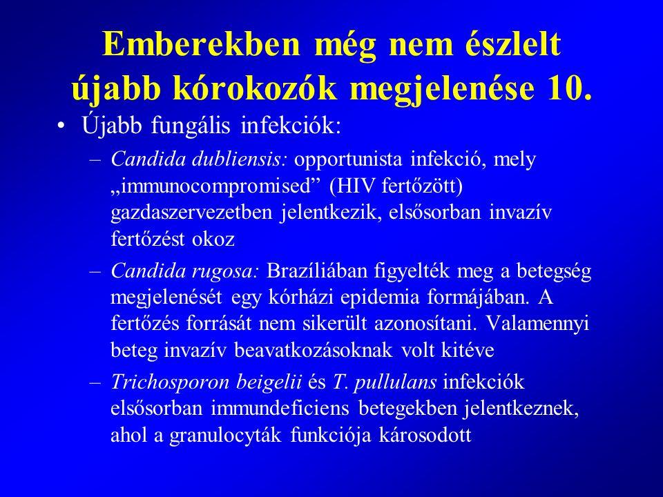 """Újabb fungális infekciók: –Candida dubliensis: opportunista infekció, mely """"immunocompromised"""" (HIV fertőzött) gazdaszervezetben jelentkezik, elsősorb"""