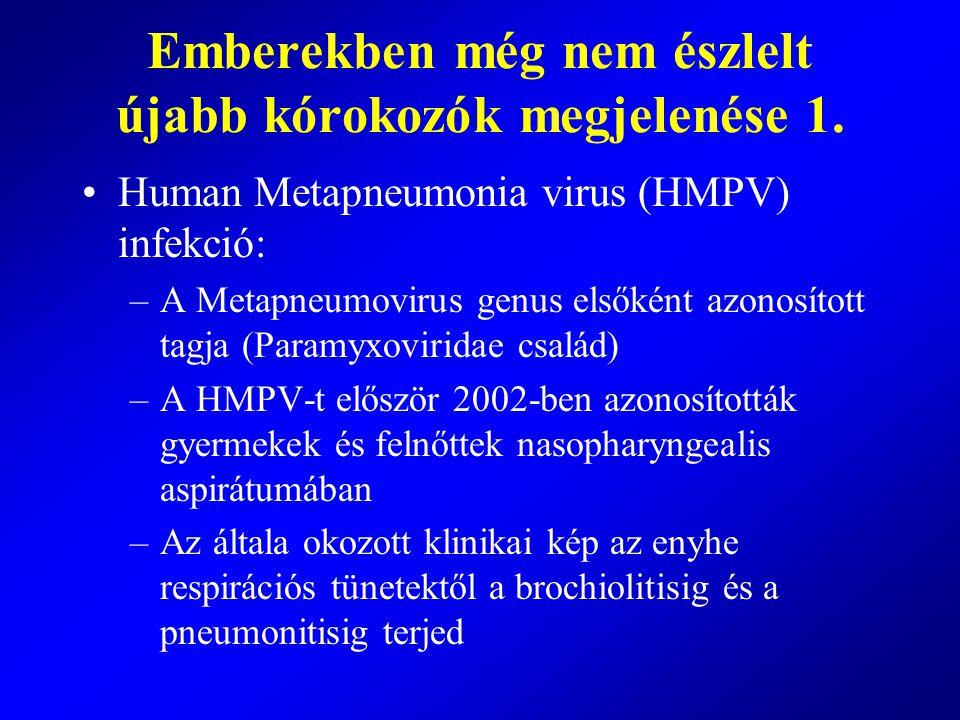 Emberekben még nem észlelt újabb kórokozók megjelenése 1. Human Metapneumonia virus (HMPV) infekció: –A Metapneumovirus genus elsőként azonosított tag