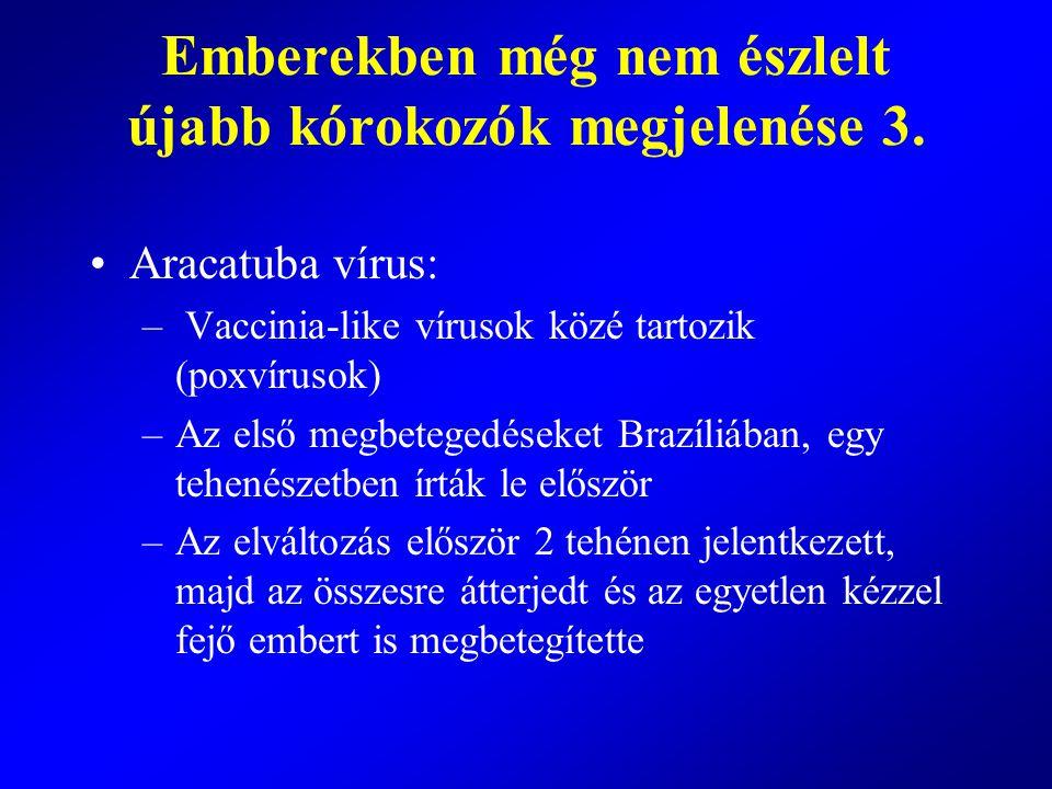 Aracatuba vírus: – Vaccinia-like vírusok közé tartozik (poxvírusok) –Az első megbetegedéseket Brazíliában, egy tehenészetben írták le először –Az elvá