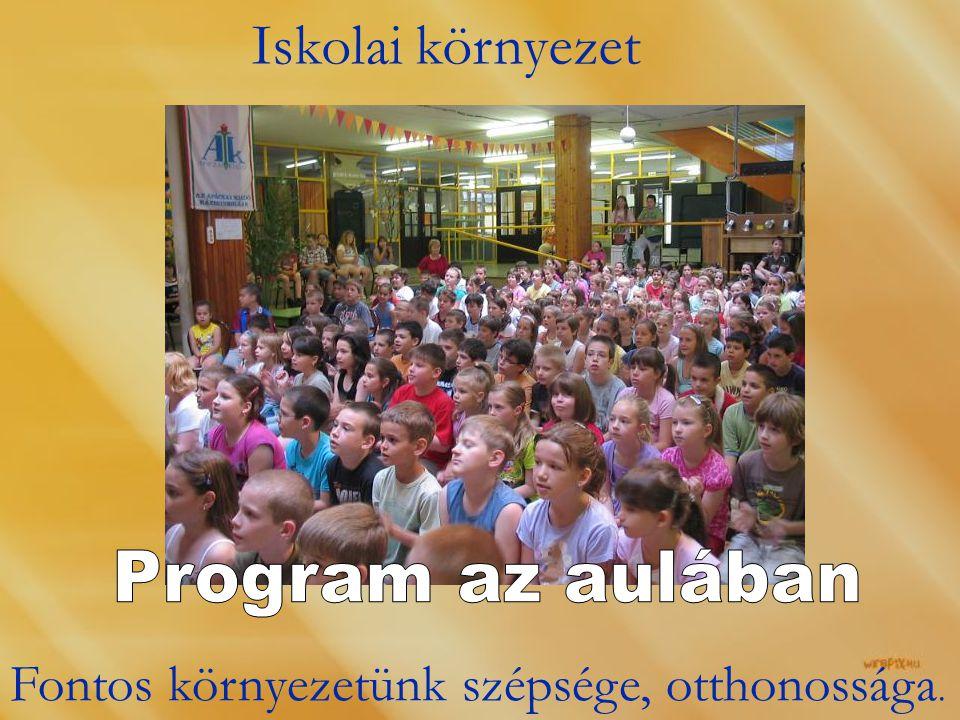 Iskolai környezet Fontos környezetünk szépsége, otthonossága.