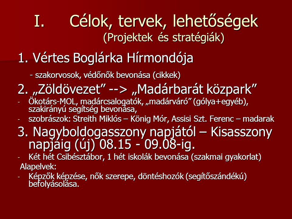 """- NHKE - 3/a Családi Sportnap - Fiúk foci, lányok főzőverseny, játékok 3/b Vértesboglári Csibésztábor - Időpont behatárolás – könnyebb tervezés - Esélyegyenlőség, ingyenesség minden gyerek számára - Gyógynövényes túra szakvezetéssel  """"Streith Miklós Emléktúra - Bővítés a Vadvirágok Lakásotthon csoporttal (nyári progr.) 3/c Nagyboldogasszony Ünnepe - egyházközség, NKÖ, vállalkozók, (szolgáltatók), lakosság, külsősök együttműködése."""
