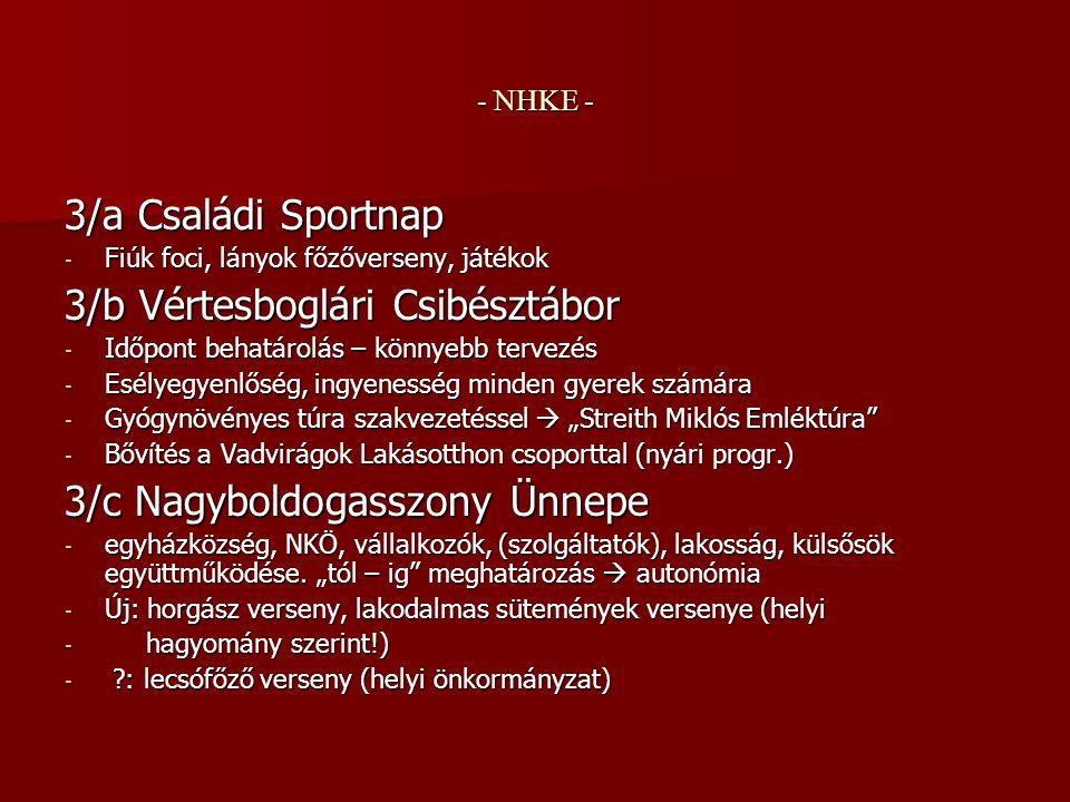 """- NHKE - 4.Csibésztanya - """"téli tematikus program, helységhez, fűtéshez stb."""