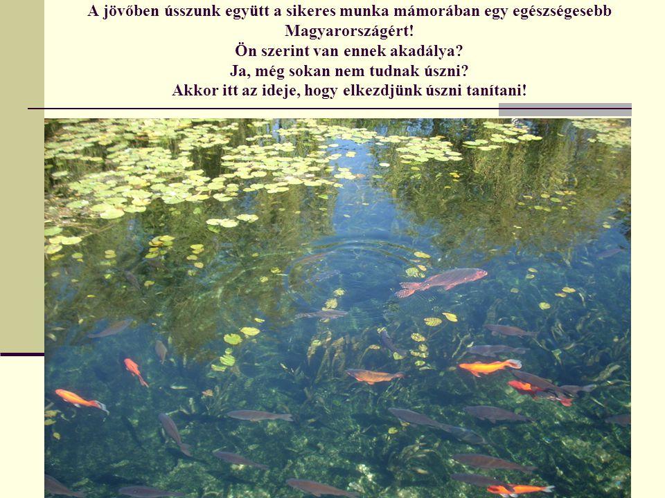 A jövőben ússzunk együtt a sikeres munka mámorában egy egészségesebb Magyarországért.