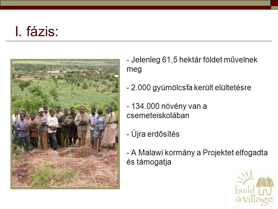 - Jelenleg 61,5 hektár földet művelnek meg - 2.000 gyümölcsfa került elültetésre - 134.000 növény van a csemeteiskolában - Újra erdősítés - A Malawi kormány a Projektet elfogadta és támogatja I.