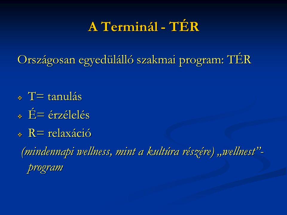 A Terminál - TÉR Országosan egyedülálló szakmai program: TÉR  T= tanulás  É= érzélelés  R= relaxáció (mindennapi wellness, mint a kultúra részére)