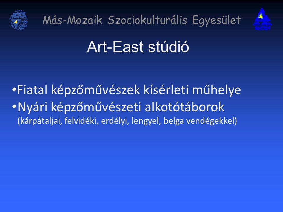 Más-Mozaik Szociokulturális Egyesület Art-East stúdió Fiatal képzőművészek kísérleti műhelye Nyári képzőművészeti alkotótáborok (kárpátaljai, felvidéki, erdélyi, lengyel, belga vendégekkel)