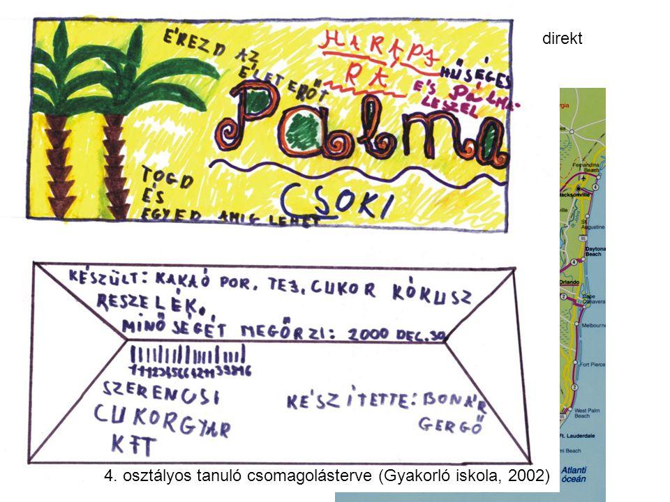 folyamatábra térképrajz 4. osztályos tanuló csomagolásterve (Gyakorló iskola, 2002) direkt