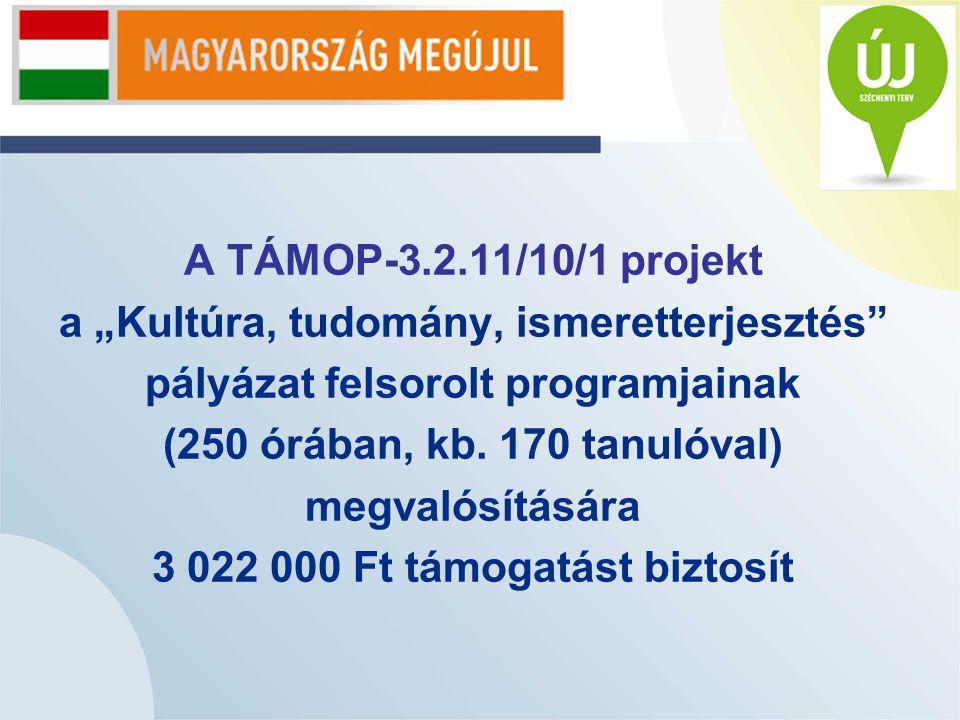 """A TÁMOP-3.2.11/10/1 projekt a """"Kultúra, tudomány, ismeretterjesztés pályázat felsorolt programjainak (250 órában, kb."""
