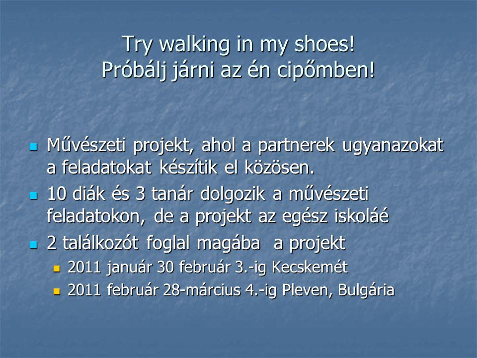 Try walking in my shoes. Próbálj járni az én cipőmben.
