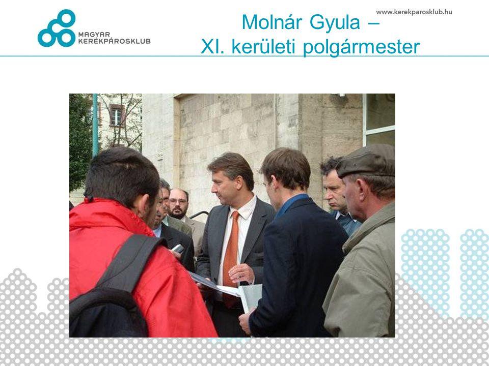Molnár Gyula – XI. kerületi polgármester